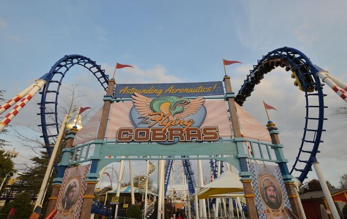 the-flying-cobras.jpg